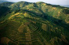 Terrazas de cultivo en Ruanda.   By_George Steinmetz