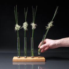 Adaptation Vase #decor #tabletop #flowers #vessels