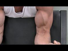 3 Biceps Workouts For Mass WorkoutPrograms.net   WorkoutPrograms.net