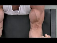 3 Biceps Workouts For Mass WorkoutPrograms.net | WorkoutPrograms.net