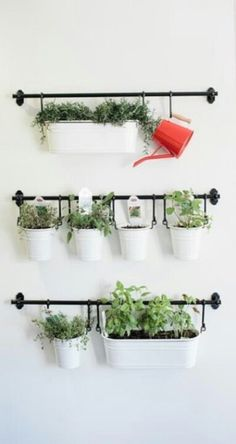 .Herbs planter idea