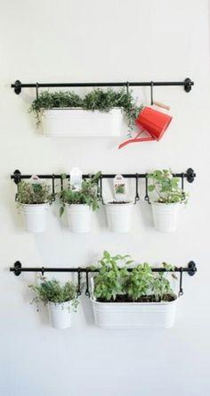 .Herbs planter idea