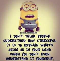 Cute Funny Minion Quotes (12:08:40 AM, Saturday 01, August