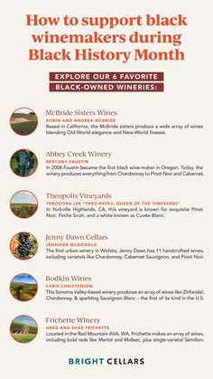 If you're looking for ways to make your own black history month celebration or celebrate black history in general, these are our favorite black owned wineries. Give them a follow, order a bottle of wine, and support cultural diversity in the wine industry! Wine Guide, Cultural Diversity, How To Become, How To Make, Wineries, Black History Month, Wine Tasting, Old World, Need To Know