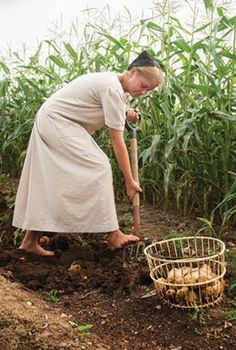 How much do you think you know about the Amish? Let's out you to the test with these things you didn't know about the Amish. Amish Country, Country Life, Amish Farm, Country Kitchen, Amish Pie, Amische Quilts, Amish Family, Amish Culture, Amish Community