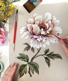 Best Peony drawing ideas on Art Floral, Fabric Painting, Painting & Drawing, Watercolor Flowers, Watercolor Paintings, Peony Painting, China Painting, Watercolours, Peony Drawing