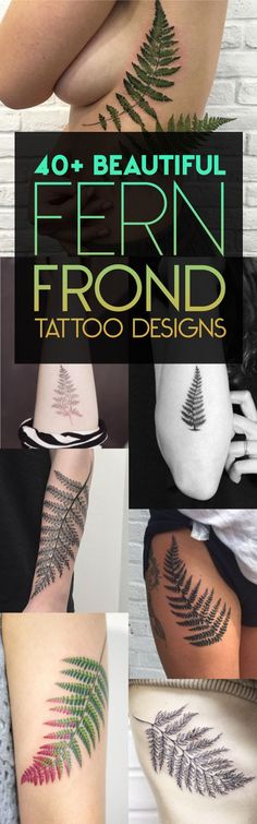 40+ Beautiful Fern Frond Tattoo Designs | TattooBlend