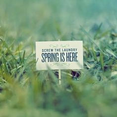 Spring is here quotes spring outdoors green sign grass laundry