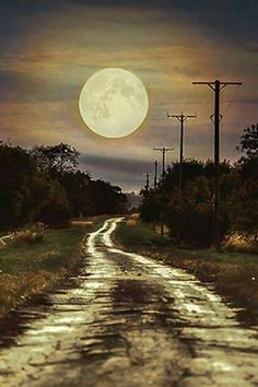 Country road made beautiful by this full moon.