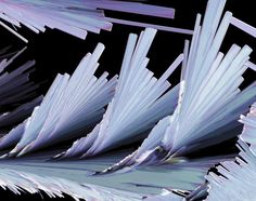 Microscopic science art photography: Sulfosalicylic Acid Crystals,by Thomas Balla