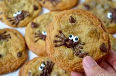 Holding a Spider Chocolate Chip Cookie with more cookies in the background