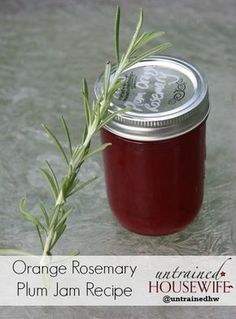 Orange Rosemary Plum Jam Canning Recipe for Waterbath – Kolay yemek Tarifleri Plum Jam Recipes, Jelly Recipes, Gf Recipes, Healthy Recipes, Rosemary Jelly Recipe, Canning Food Preservation, Preserving Food, Jam And Jelly, Plum Jelly