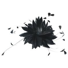 Jane Tran Feather Whirl Fascinator ($170) ❤ liked on Polyvore featuring accessories, hair accessories, hats, frames & background, headpiece, black, black fascinator, black fascinator hat, fascinator hats and jane tran