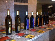 Cata del vino Baron Balche