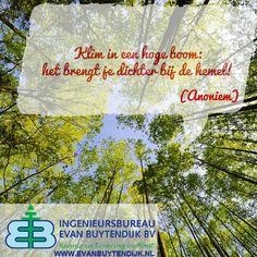 """""""Klim in een hoge boom: het brengt je dichter bij de hemel."""" (Anoniem) Ingenieursbureau Evan Buytendijk BV (@iebbv) - #hout #FSC #PEFC #certificering #groepscertificering #bomen #boom #bosbouw #hemel #natuur #spreuk #wijsheid #citaat #aforisme #uitspraak via: http://www.evanbuytendijk.nl/"""
