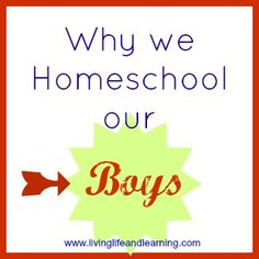 Why We Homeschool our Boys?