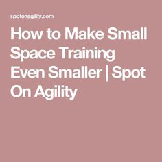 How to Make Small Space Training Even Smaller | Spot On Agility