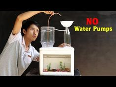Building an Awesome Aquarium with Automatic Fountain (No water pumps) Diy Water Pump, Diy Water Fountain, Water Tank, Aquaponics Fish, Fish Farming, Wooden Pallet Projects, Diy Craft Projects, Glass Fish Tanks, Back Garden Design