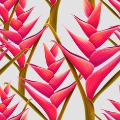 flowers fantasia by Mark Ashkenazi