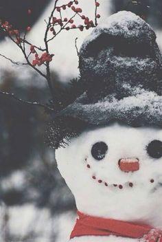 Snow dude.