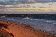 Herring Cove Cape Cod, Plymouth, Places To Visit, Vacation, Beach, Water, Outdoor, Cod, Gripe Water