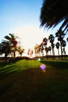 Mandalay Beach Park