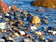 Die #Farben der #Natur - Nasse #Steine am #Ostseestrand