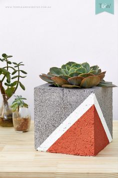 DIY metallic painted pot by Emmaly Stewart. This is an original way of decorating your plants.