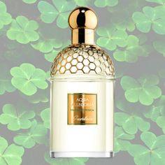 Summer Fragrance: Best Green Perfumes - think moss, green tea, young leaves, clover, and grass. | 6. Aqua Allegoria Herba Fresca, Guerlain ($90).