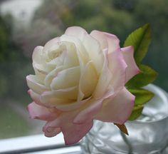 #sugarpaste #rose