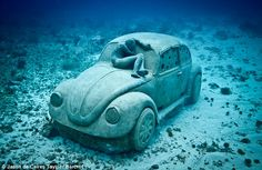 This VW Beetle is actually made from concrete and was lowered into the sea in Cancun, Mexico, as part of an underwater modern art installation