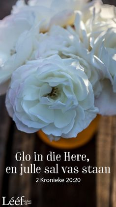 Goeie More, Hart, Afrikaans, Rose, Quotes, Flowers, Inspiration, Quotations, Biblical Inspiration