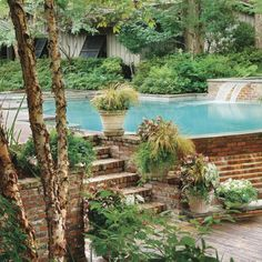 """Overall - too much, but exploring multi-level around pool & no deck on partial sides/""""infinity"""" styled.  Lush Poolside Deck - Sparkling Pools - Southern Living"""
