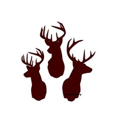 Three Deer Buck Heads Wall Decal Vinyl Wall Decals by Vinyl2Envy