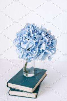 Blue hydrangea and books by OlgaPilnik on @creativemarket