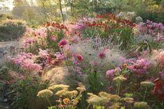 85 Stunning Small Cottage Garden Ideas for Backyard Landscaping - Backyard Garden Inspiration Prairie Garden, Meadow Garden, Dream Garden, Prairie Planting, Amazing Gardens, Beautiful Gardens, Small Cottage Garden Ideas, Backyard Cottage, Garden Borders