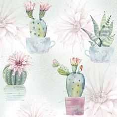 4 x Single Paper Napkins Flowering Cactuses Decoupage and Crafting Table 42