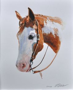 Western Horse watercolor, by Natalia Elina