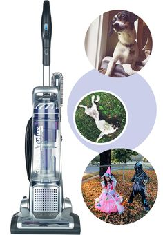 Power + Beauty: Precision Brushroll Clean PET from @Electrolux