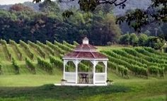Groupon - Picnic with Basket, Tour, Glasses, and Gift-Shop Credit for Two or Four at Miracle Valley Vineyard (Up to 55% Off). Groupon deal price: $25.00