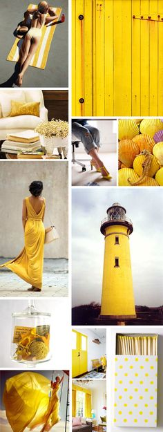 @Samantha Terryah all of this yellow made me think of you