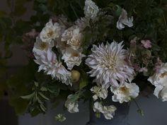 Cafe au lait dahlias | Aesme Flowers London