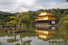 Pavilhão Dourado - Kyoto - Japão