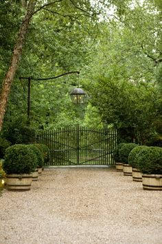 Pea gravel driveway, potted boxwood and a gated entrance with an awesome hanging light - what's not to love? Parkside Drive Home Renovation Project via Hammersmith Atlanta Gravel Driveway, Driveway Entrance, Pebble Driveway, Iron Gates Driveway, Front Gates, Entrance Gates, House Entrance, Landscape Design, Garden Design