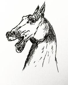 Pen ink drawing  #inkedup #myillustration #inkstyle #horsehead #sketchy