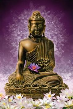 buddha ~ purple lotus flower