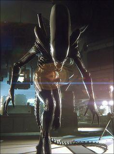 Xenomorph in alien isolation