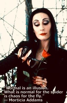Uitspraak van Morticia Addams uit de film 'The Addams Family'. Tv Quotes, Great Quotes, Life Quotes, Inspirational Quotes, It Movie Quotes, Wisdom Quotes, Chaos Quotes, Sensible Quotes, Funny Quotes