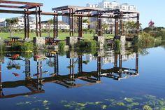 Greenpoint Park and Biodiversity Centre Urban Park, Animal Species, Local Artists, Public Art, Virtual Tour, Urban Design, Cape Town, Conservation, Wind Chimes
