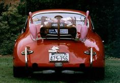 #Porsche #vintage #356c Porsche 356 coupe outlaw with pink flamingoes? Let's hit the road!
